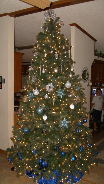 hall xmas tree 2007 full