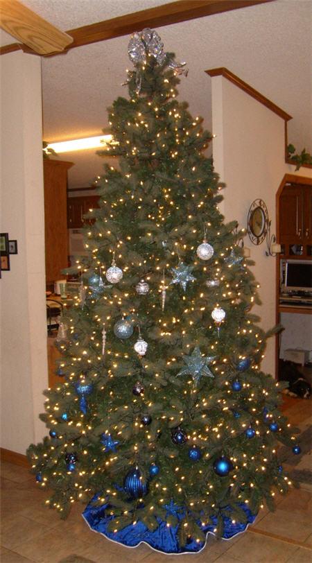 hall xmas tree 2007