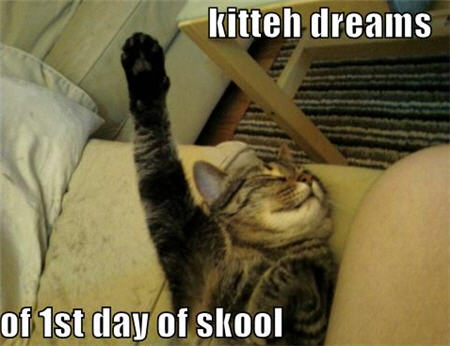 lolcats first day of school dreams