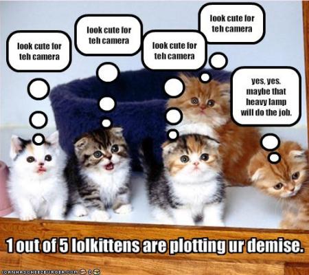LOLCats - Zombie cat