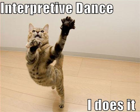 lolcats interpretive dance