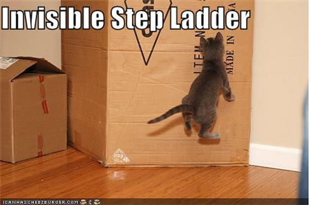 lolcats invisible step ladder