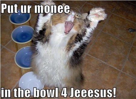 lolcats money in bowl for jesus