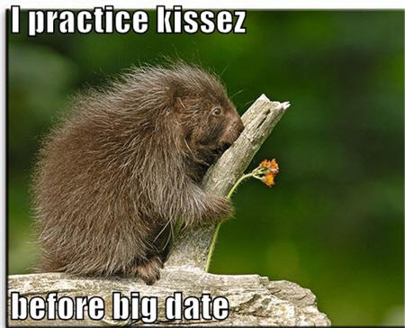 lolcats i practice kissez before big date
