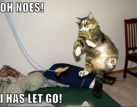 lolcats let go