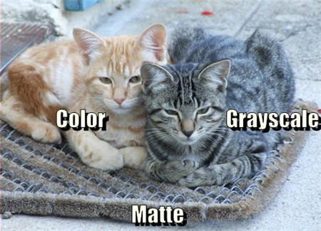 lolcats color greyscale matte
