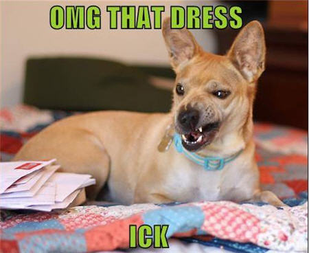 lolcats omg that dress ick dog