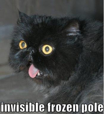lolcats invisible frozen pole