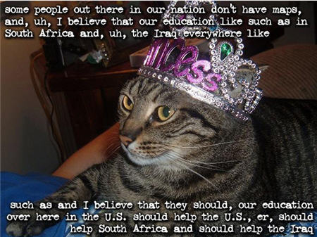 lolcats miss america
