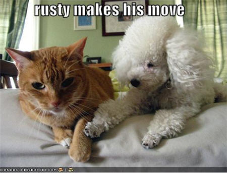 rusty makes his move