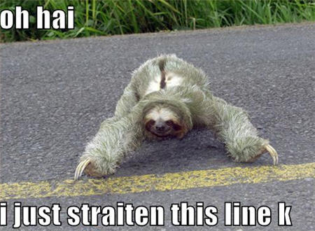 Lolcats Sloth