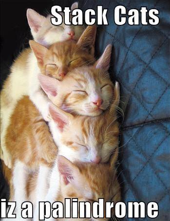 lolcats stackcats