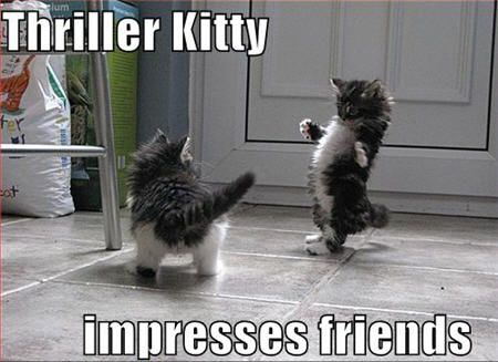 lolcats thriller kitty