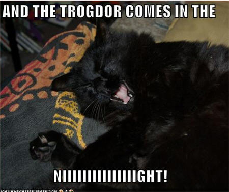 lolcats trogdor
