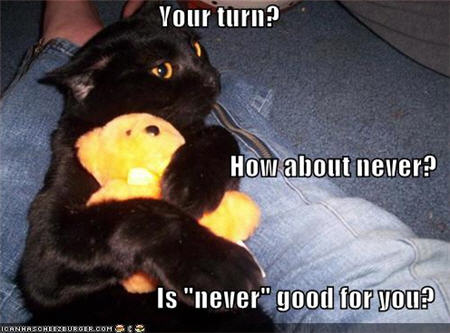lolcats your turn how about never