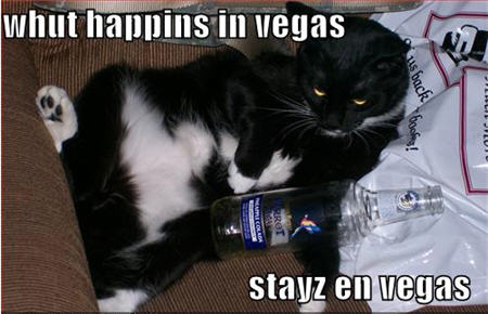 what happens in vegas stays in vegas lolcats