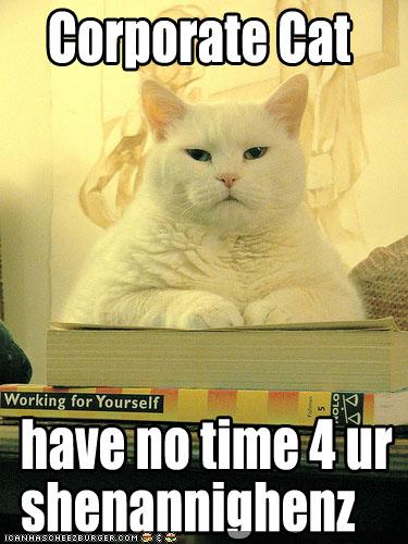 funny-pictures-corporate-cat