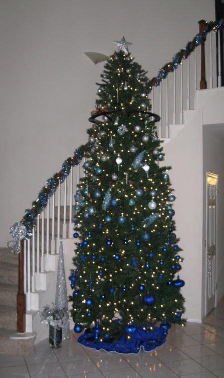 Hall XMAS Tree 2011